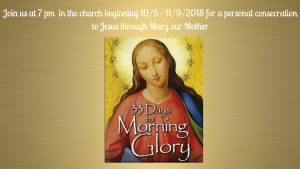 7 pm - 33 to Consecration to Jesus through Mary - Church