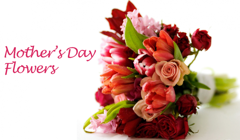 Pick Up Of St Vincent De Paul Mother S Day Flowers At Both Churches 45 Crosswicks Street Bordentown Nj 08505 609 298 0261